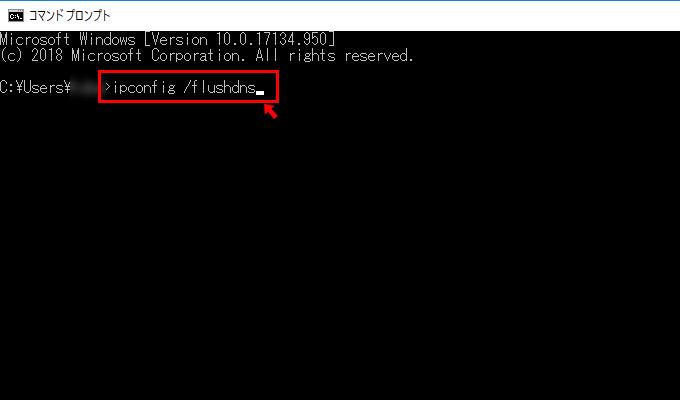 するとコマンドプロンプトが立ち上がるので、「ipconfig /flushdns」と入力して、キーボードのEnterを押しましょう。